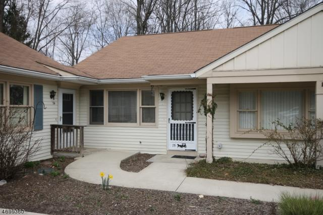 75 Carriage Ln, Sparta Twp., NJ 07871 (MLS #3374170) :: The Dekanski Home Selling Team