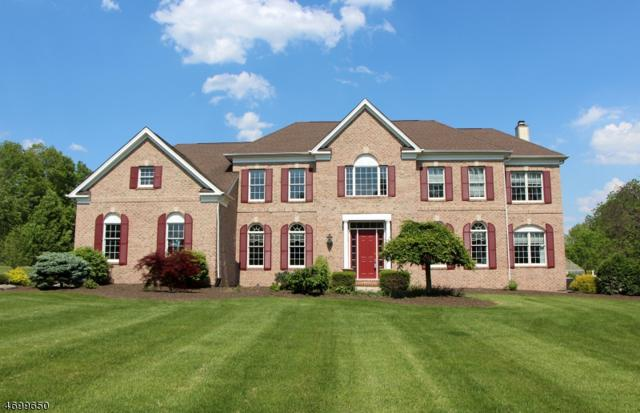 10 Perry Rd, Clinton Twp., NJ 08801 (MLS #3375018) :: The Dekanski Home Selling Team
