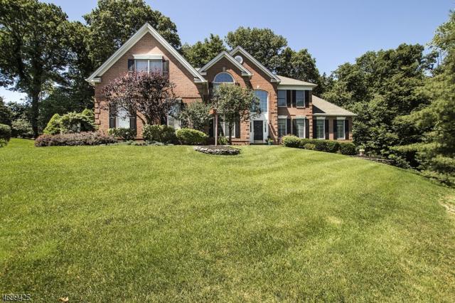 3 Emily Pl, Washington Twp., NJ 07853 (MLS #3375225) :: The Dekanski Home Selling Team