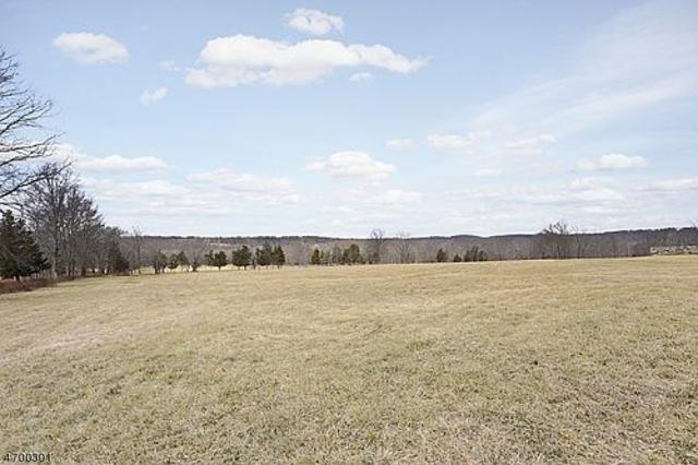 0 Black River Rd, Bedminster Twp., NJ 07931 (MLS #3375227) :: The Dekanski Home Selling Team