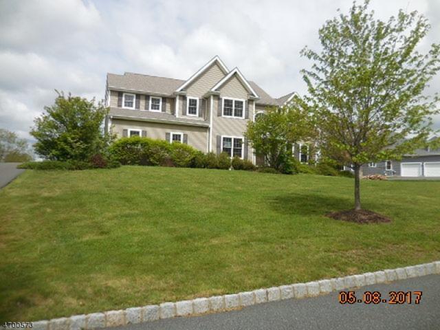 4 Augusta Ct, Fredon Twp., NJ 07860 (MLS #3375302) :: The Dekanski Home Selling Team