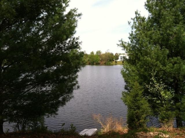 382 S Shore Dr, Montague Twp., NJ 07827 (MLS #3375369) :: The Dekanski Home Selling Team