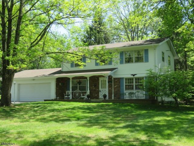 8 Pine Way, Washington Twp., NJ 07853 (MLS #3375435) :: The Dekanski Home Selling Team
