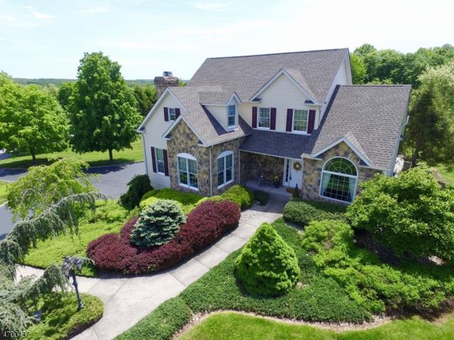 5 Crestview Dr, Holland Twp., NJ 08848 (MLS #3375544) :: The Dekanski Home Selling Team