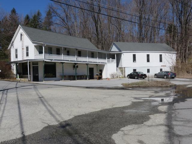 1226 State Route 23, Wantage Twp., NJ 07461 (MLS #3375720) :: The Dekanski Home Selling Team