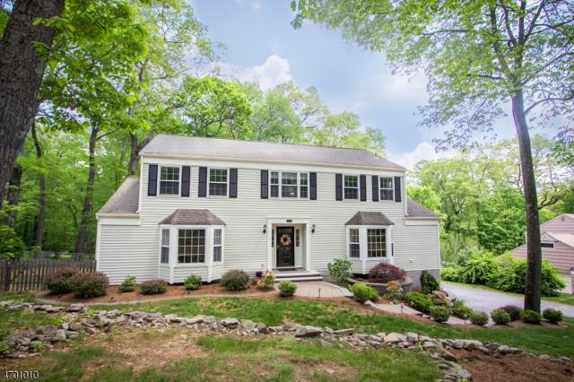 16 Laurel Hill Dr, Randolph Twp., NJ 07869 (MLS #3375740) :: The Dekanski Home Selling Team