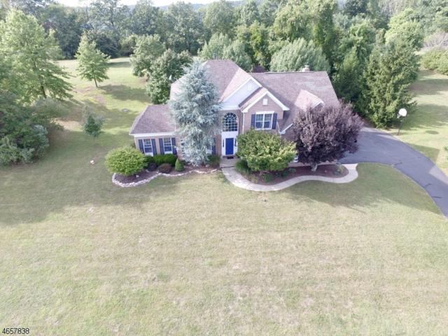 17 Hilltop Rd, Alexandria Twp., NJ 08848 (MLS #3375758) :: The Dekanski Home Selling Team