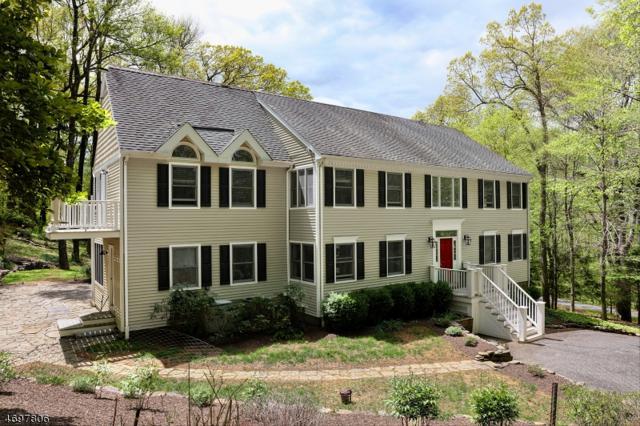 62 Brookville Hollow Rd, Delaware Twp., NJ 08559 (MLS #3375760) :: The Dekanski Home Selling Team