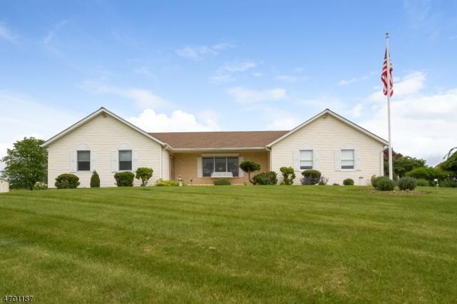 24 Crestview Dr, Holland Twp., NJ 08848 (MLS #3375938) :: The Dekanski Home Selling Team