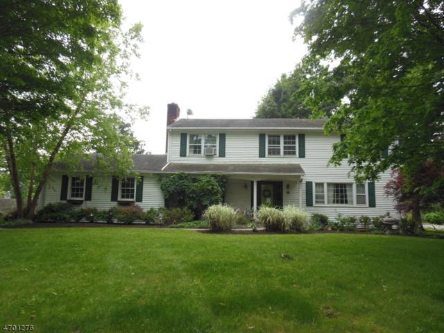 29 Hillcrest Rd, Hillsborough Twp., NJ 08844 (MLS #3375995) :: The Dekanski Home Selling Team
