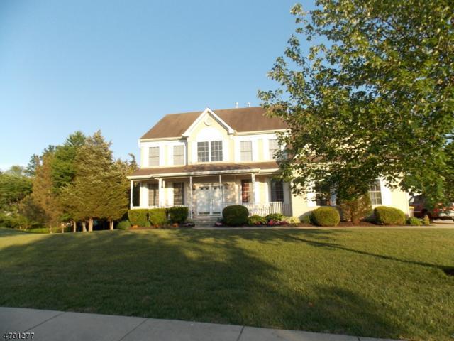 10 Joan Rd, Franklin Twp., NJ 08873 (MLS #3375996) :: The Dekanski Home Selling Team
