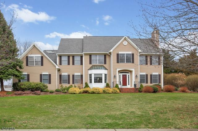 102 Blackburn Rd, Bernards Twp., NJ 07920 (MLS #3376081) :: The Dekanski Home Selling Team