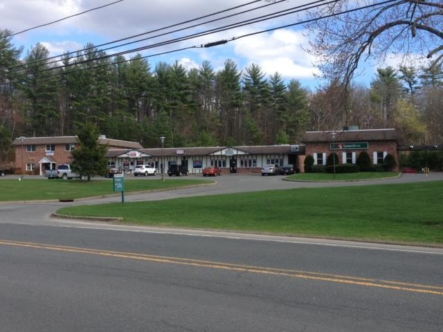 266 Clove Rd, Montague Twp., NJ 07827 (MLS #3376198) :: The Dekanski Home Selling Team