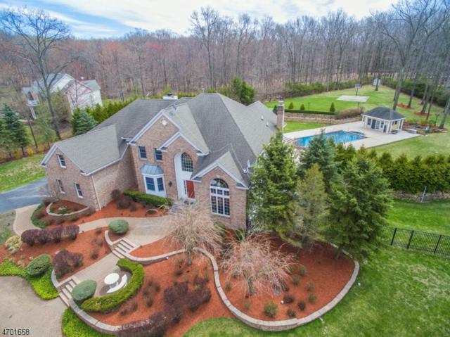 15 Dolly Bridge Rd, Randolph Twp., NJ 07869 (MLS #3376421) :: The Dekanski Home Selling Team