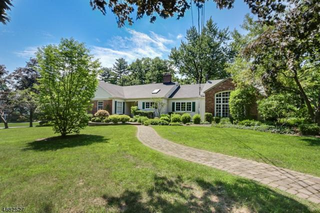 31 Park Ln, Madison Boro, NJ 07940 (MLS #3376580) :: The Dekanski Home Selling Team