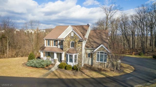 3 Deer Run Rd, Union Twp., NJ 08867 (MLS #3376760) :: The Dekanski Home Selling Team