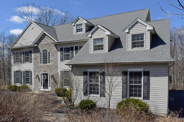 25 Kern Dr, Mount Olive Twp., NJ 07836 (MLS #3377020) :: The Dekanski Home Selling Team