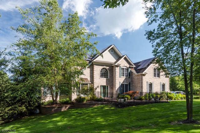 1 Mccain Ct, Mount Olive Twp., NJ 07836 (MLS #3377105) :: The Dekanski Home Selling Team