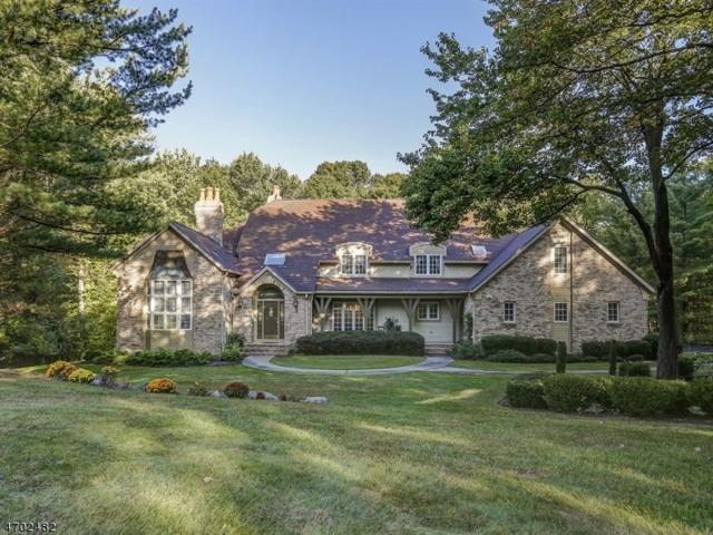 29 Old Farmstead Rd, Chester Twp., NJ 07930 (MLS #3377111) :: The Dekanski Home Selling Team
