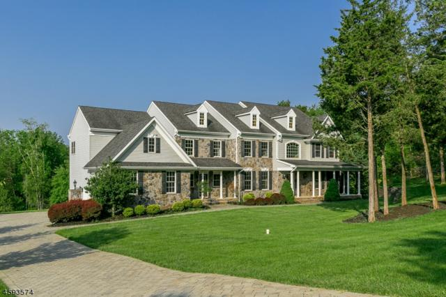 2 Meadow View Ct, Branchburg Twp., NJ 08876 (MLS #3377162) :: The Dekanski Home Selling Team