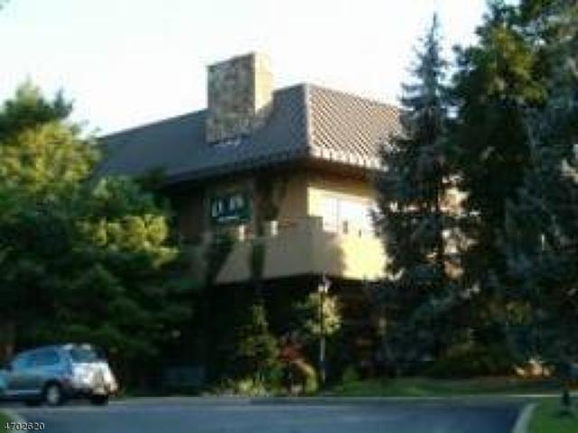 2 Chamonix Dr, Unit 206 #206, Vernon Twp., NJ 07462 (MLS #3377258) :: The Dekanski Home Selling Team