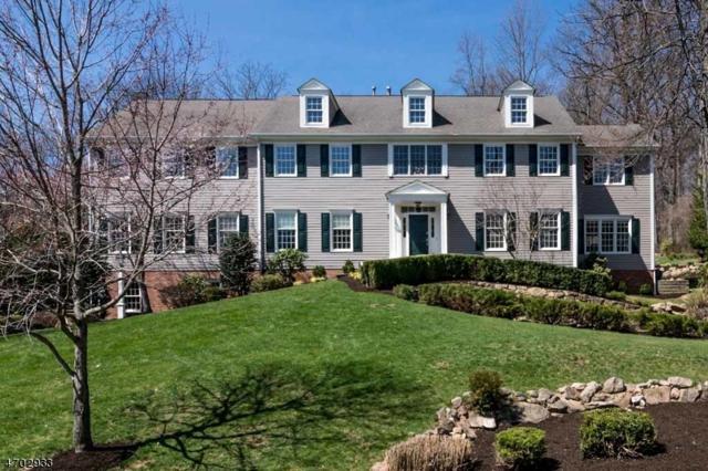 12 Brookrace Dr, Mendham Twp., NJ 07945 (MLS #3377652) :: The Dekanski Home Selling Team