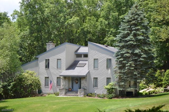 61 Brookside Dr, Sparta Twp., NJ 07871 (MLS #3377737) :: The Dekanski Home Selling Team