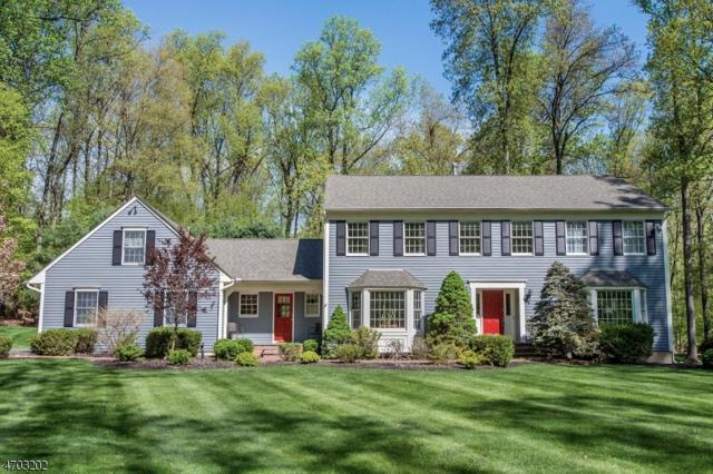 32 Willow Dr, Chester Twp., NJ 07930 (MLS #3377812) :: The Dekanski Home Selling Team