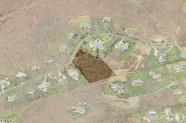 10 Charlotte Hill Dr, Bernardsville Boro, NJ 07924 (MLS #3378092) :: The Dekanski Home Selling Team