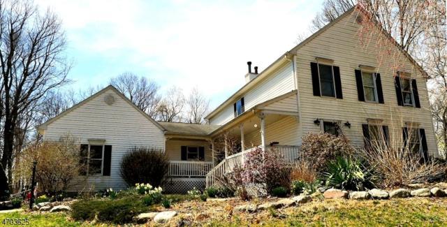 12 Victoria Crossing Rd, Knowlton Twp., NJ 07832 (MLS #3378241) :: The Dekanski Home Selling Team