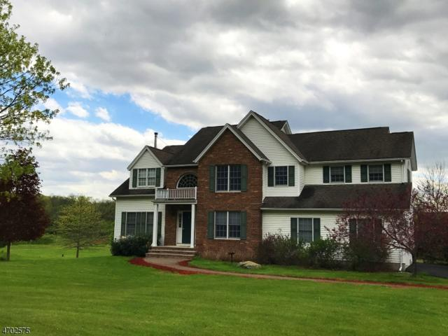16 Patricia Ln, Lafayette Twp., NJ 07848 (MLS #3378298) :: The Dekanski Home Selling Team