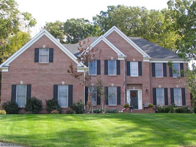 1 Bradley Ct, Green Brook Twp., NJ 08812 (MLS #3378341) :: The Dekanski Home Selling Team