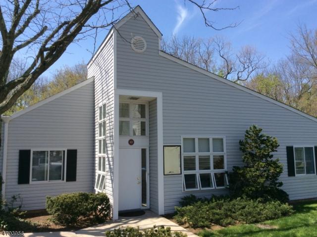 401 Omni Dr, Hillsborough Twp., NJ 08844 (MLS #3378450) :: The Dekanski Home Selling Team