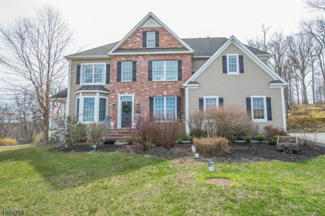 2 Vanessa Ct, West Milford Twp., NJ 07480 (MLS #3378464) :: The Dekanski Home Selling Team