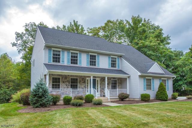 13 Mountain Ave, Mount Olive Twp., NJ 07836 (MLS #3378665) :: The Dekanski Home Selling Team