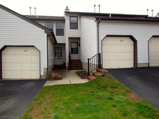 525 Cypress Court, Raritan Twp., NJ 08822 (MLS #3378672) :: The Dekanski Home Selling Team