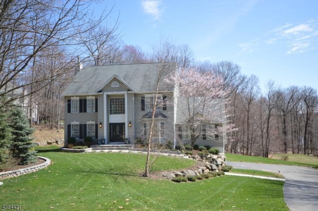 14 Mount Pleasant Rd, Sparta Twp., NJ 07871 (MLS #3378861) :: The Dekanski Home Selling Team