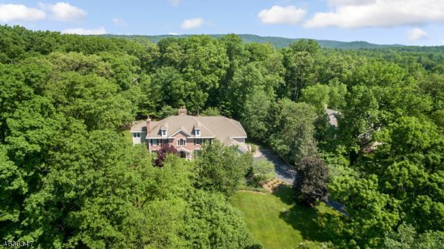 94 Emily Rd, Bernards Twp., NJ 07931 (MLS #3378999) :: The Dekanski Home Selling Team