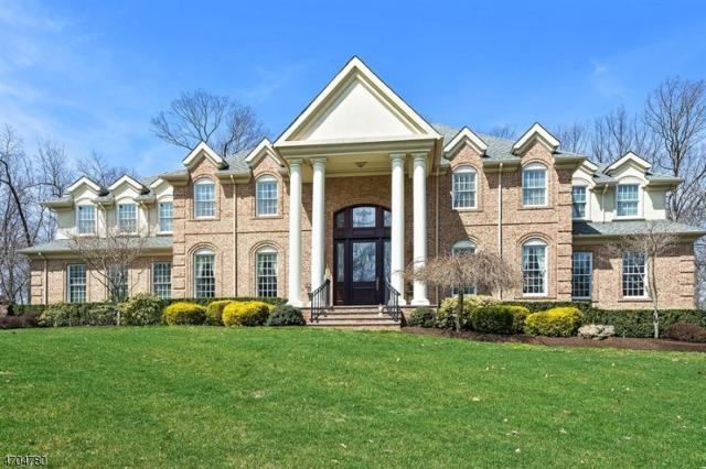 2 Caruso Ct, Bridgewater Twp., NJ 08807 (MLS #3379181) :: The Dekanski Home Selling Team