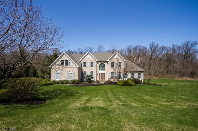 20 Willever Rd, Bethlehem Twp., NJ 08802 (MLS #3379373) :: The Dekanski Home Selling Team