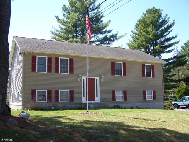 227 N Lake Shore, Montague Twp., NJ 07827 (MLS #3379660) :: The Dekanski Home Selling Team