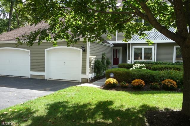 3 Nottingham Ct #3, Morris Twp., NJ 07960 (MLS #3379703) :: The Dekanski Home Selling Team