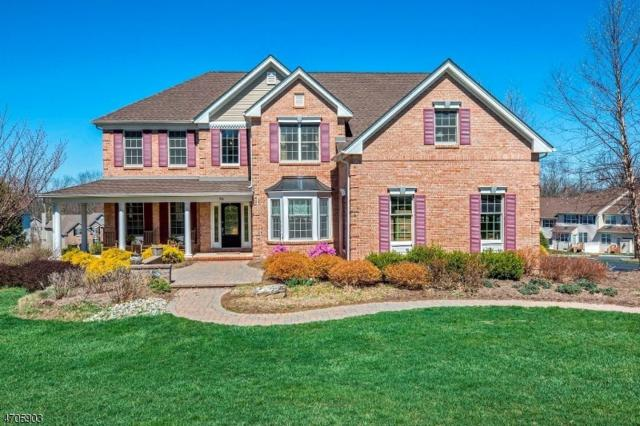 58 Elias Dr, Mount Olive Twp., NJ 07828 (MLS #3380189) :: The Dekanski Home Selling Team