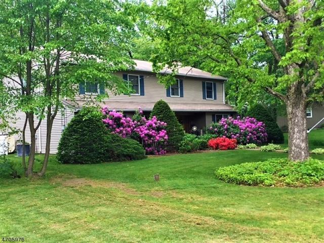 18 Island Trl, West Milford Twp., NJ 07421 (MLS #3380280) :: The Dekanski Home Selling Team