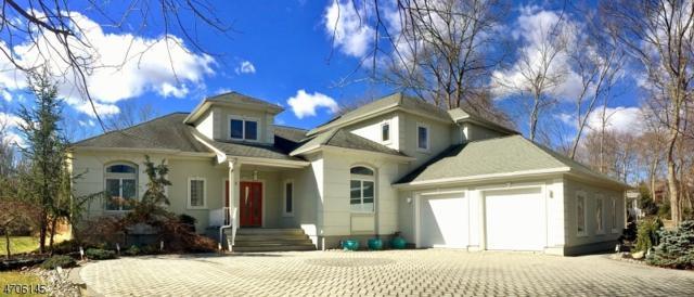 3 Park Ln, Jefferson Twp., NJ 07438 (MLS #3380510) :: The Dekanski Home Selling Team