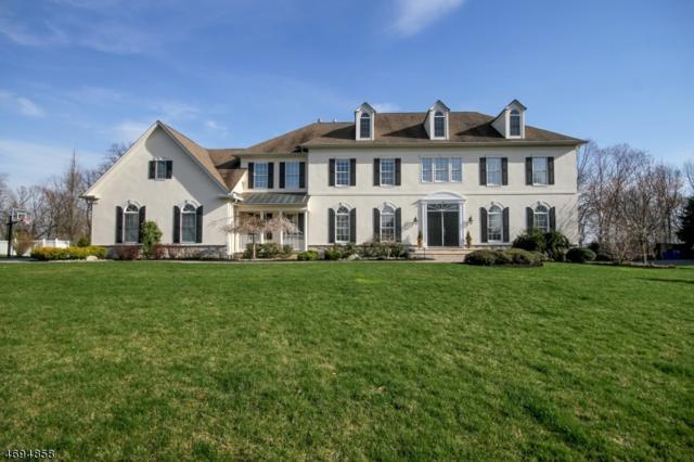 33 Ridge Rd, Green Brook Twp., NJ 08812 (MLS #3380692) :: The Dekanski Home Selling Team