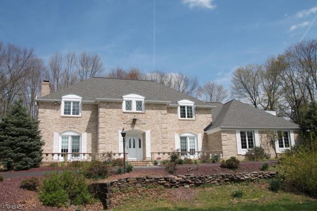 10 Windsor Ct, Clinton Twp., NJ 08801 (MLS #3380715) :: The Dekanski Home Selling Team