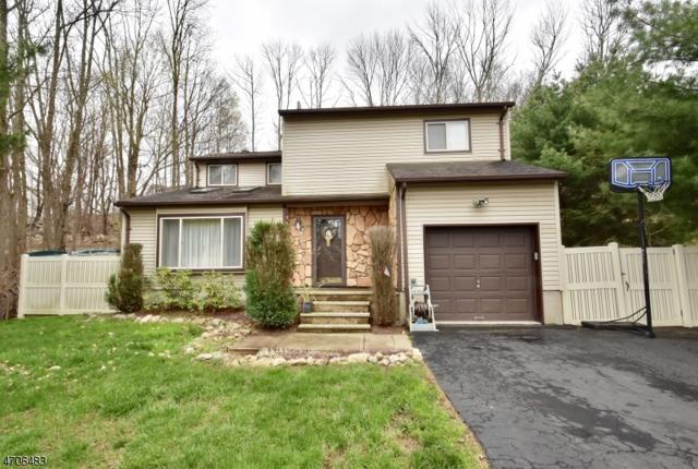 14 Brady Rd, Jefferson Twp., NJ 07849 (MLS #3380832) :: The Dekanski Home Selling Team