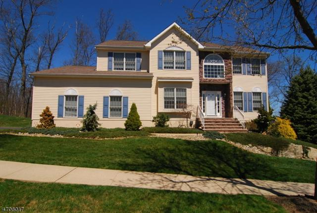11 Long Ridge Ct, Roxbury Twp., NJ 07852 (MLS #3380850) :: The Dekanski Home Selling Team