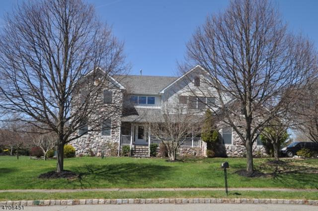 18 Dixon Ln, Montgomery Twp., NJ 08502 (MLS #3380871) :: The Dekanski Home Selling Team